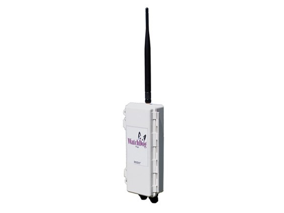 Watchdog Wireless Station Pup